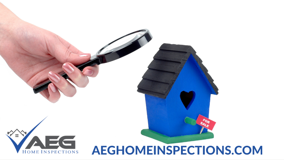 aeg_home_inspections.png