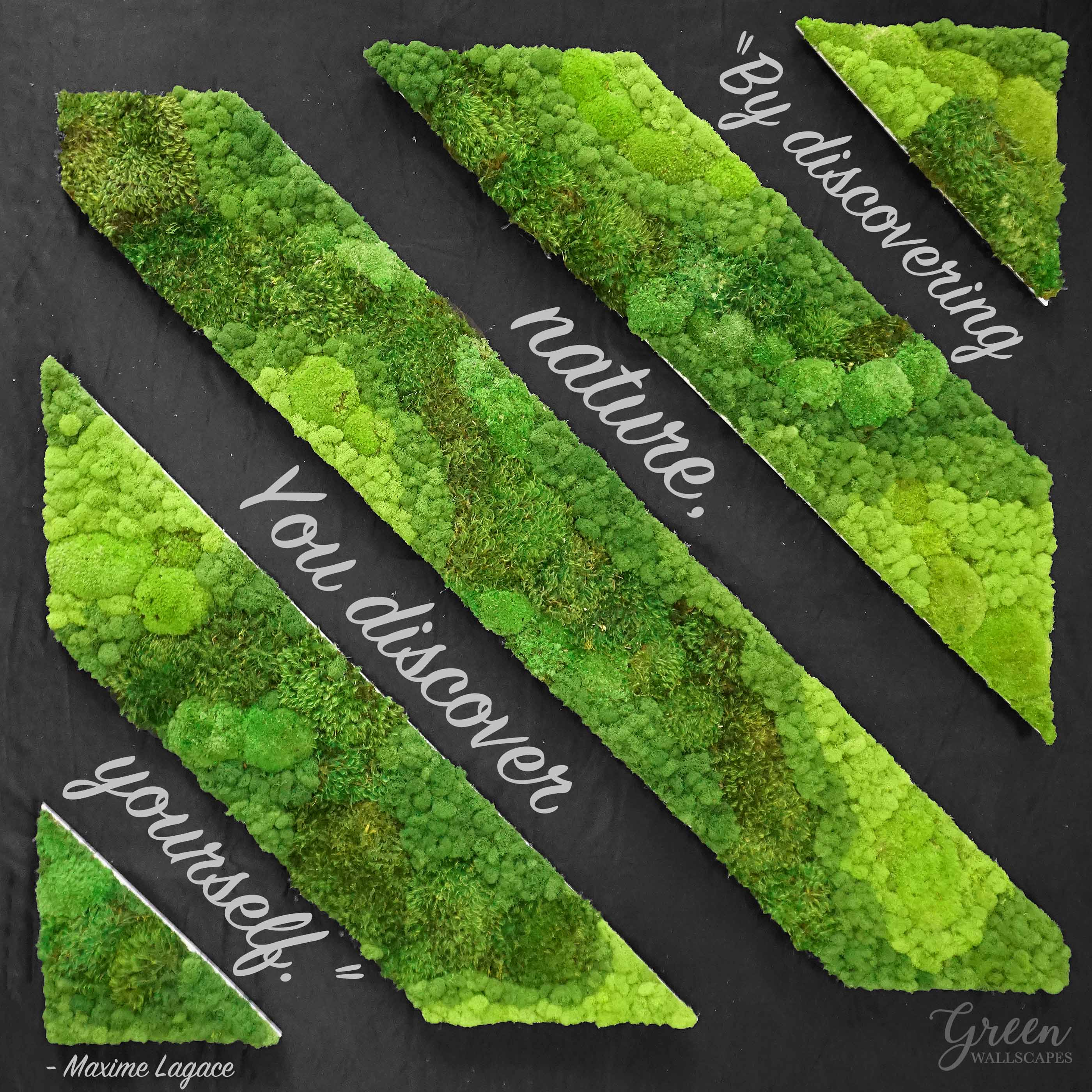 mixed_mosses_strips_-_quote.jpg