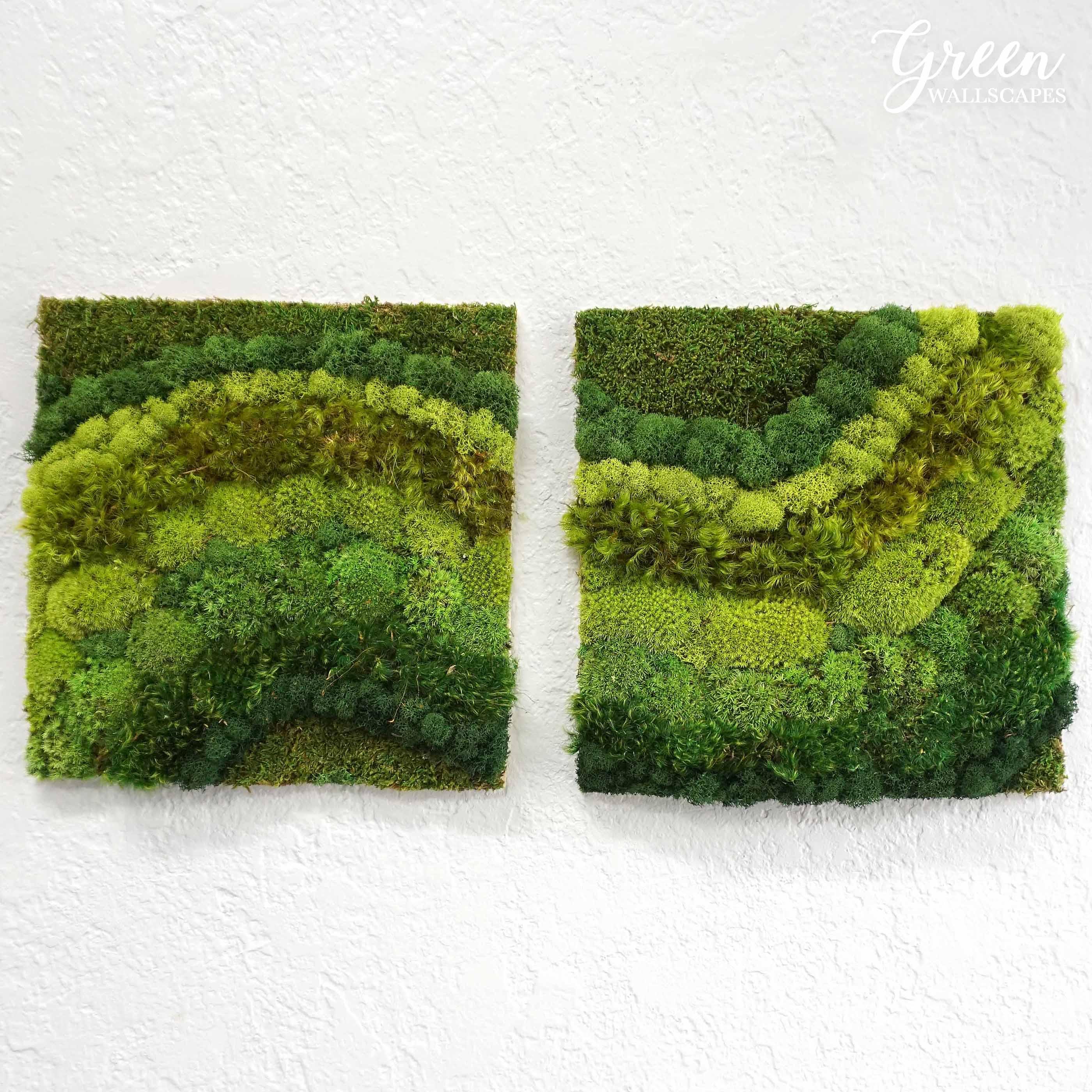 moss_flow.jpg
