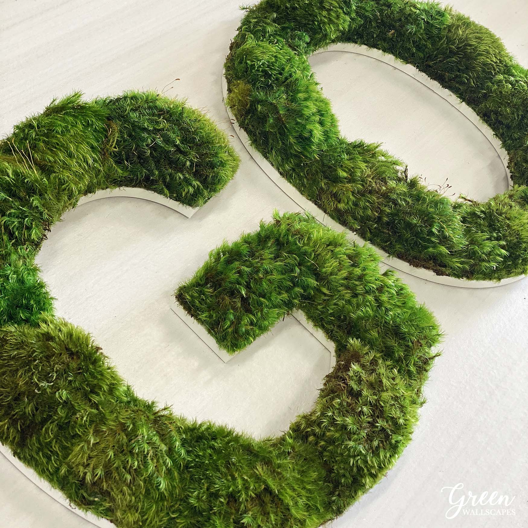 go_mood_moss_lettering.jpg