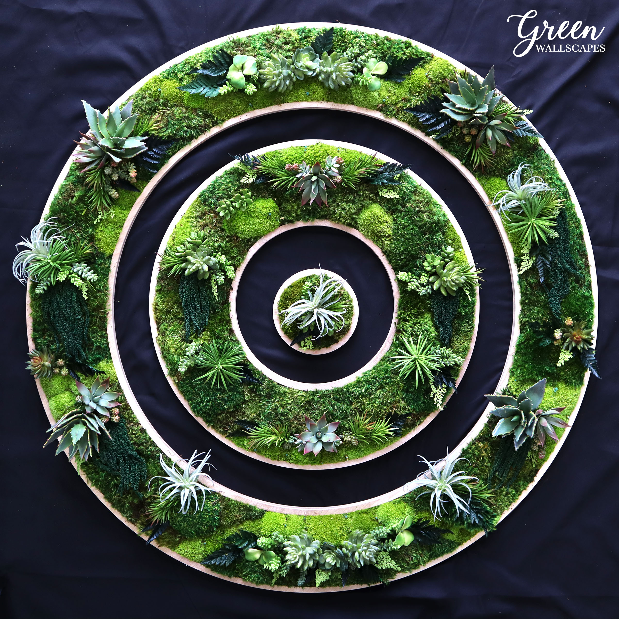 triple_circles.jpg