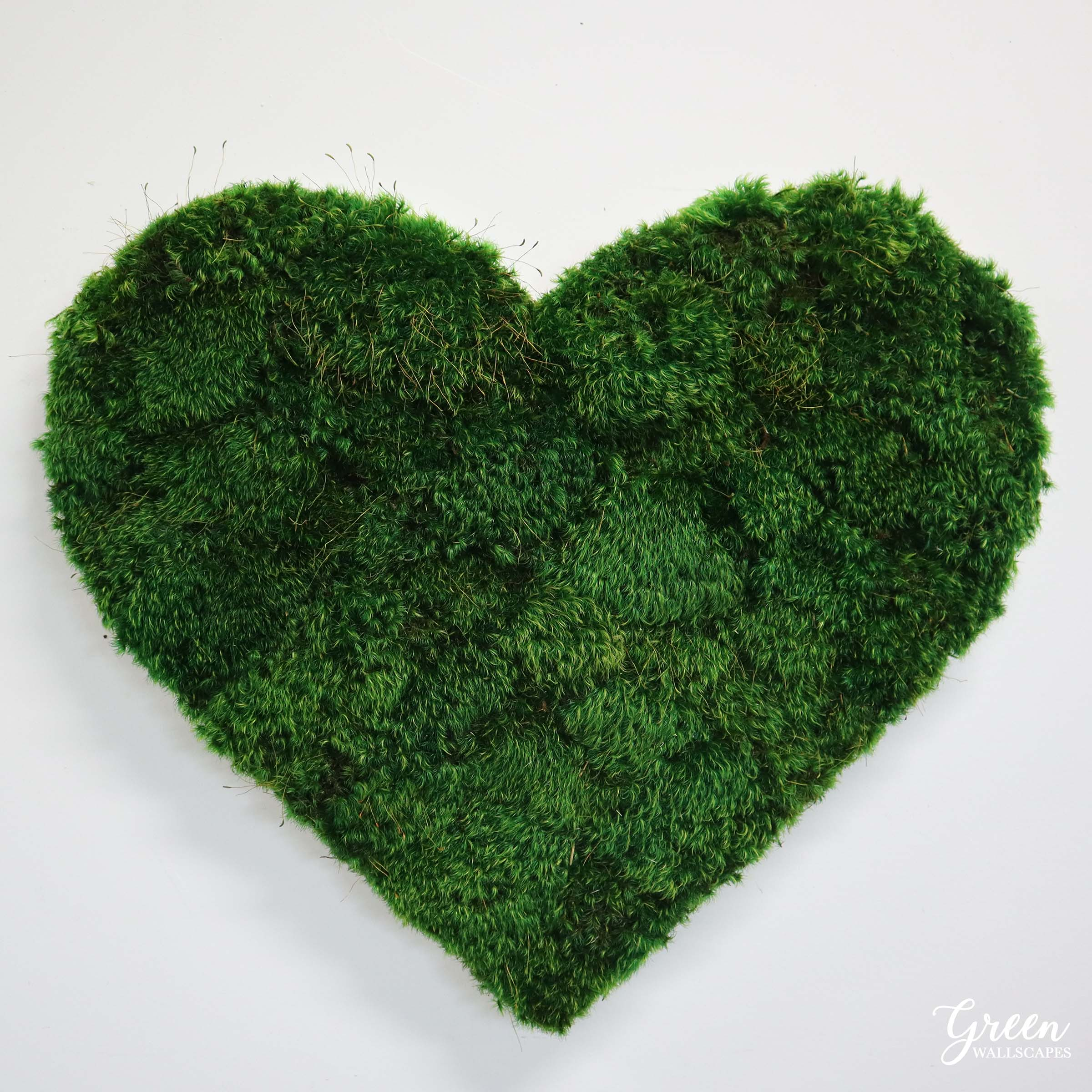 mood_moss_heart_photo_2.jpg