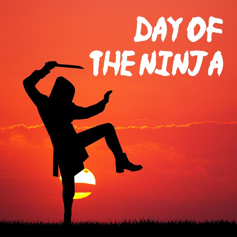 day_of_the_ninja.jpg