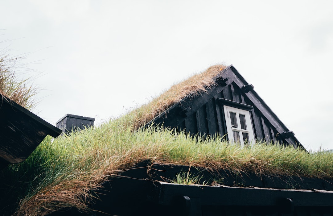 home_with_grass_roof__freeman_roofing_4201_auckland_pace__fl_32571_(850)_994-1078__http-:www.freemanroofing.com.jpg