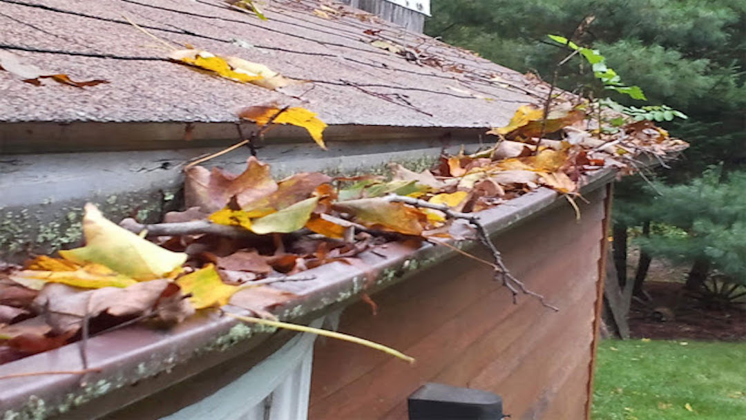 gutters_that_need_to_be_cleaned__gutter_solutions_and_home_improvements__(850)_776-1782.jpg