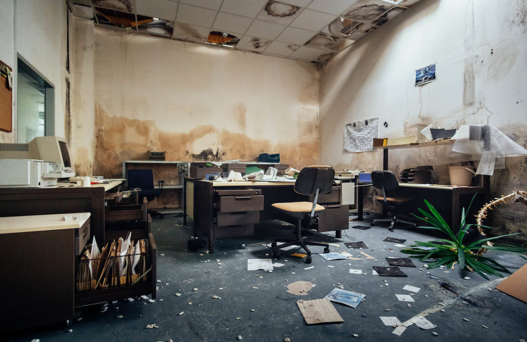 terrible_mold_on_commercil_office_walls__servpro_of_west_pensacola_1101_s._fairfield_dr_pensacola__fl._32506_850-469-1160_https-::bit.ly:36jv0ta__.jpg