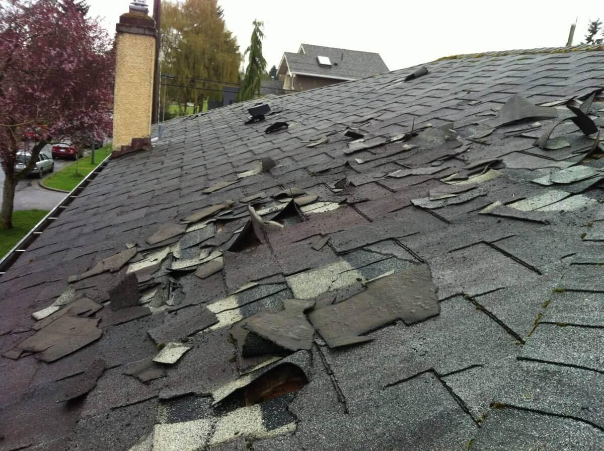 bad_shingles__freeman_roofing_4201_auckland_pace__fl_32571_(850)_994-1078__http-:www.freemanroofing.com.jpg
