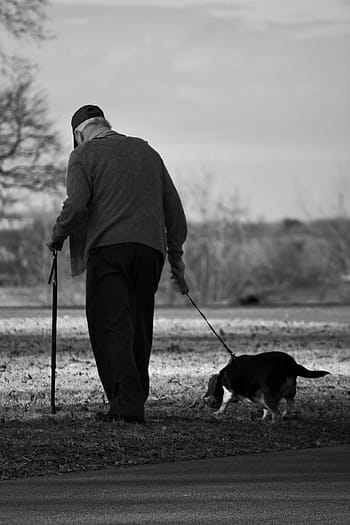 dog-old-man-walk-elderly-royalty-free-thumbnail.jpg
